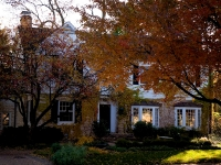 orange-tree-in-front-of-house2-1